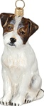 Jack Russell Terrier Rough Coat