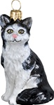 American Shorthair Cat - Black and White