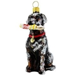 Labrador Retriever Buoy Snow Chocolate